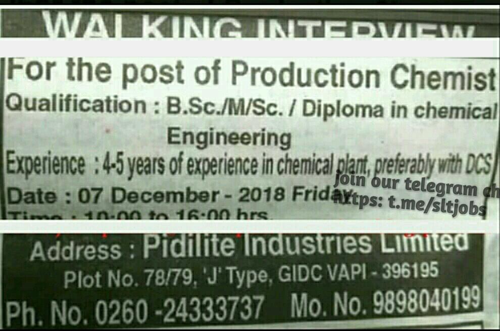 Gujarat Jobs Live Pidilite Industries Ltd
