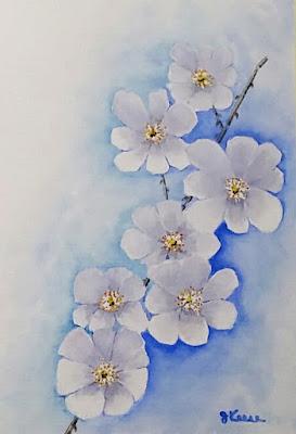 Wild Rose Watercolor - JKeese