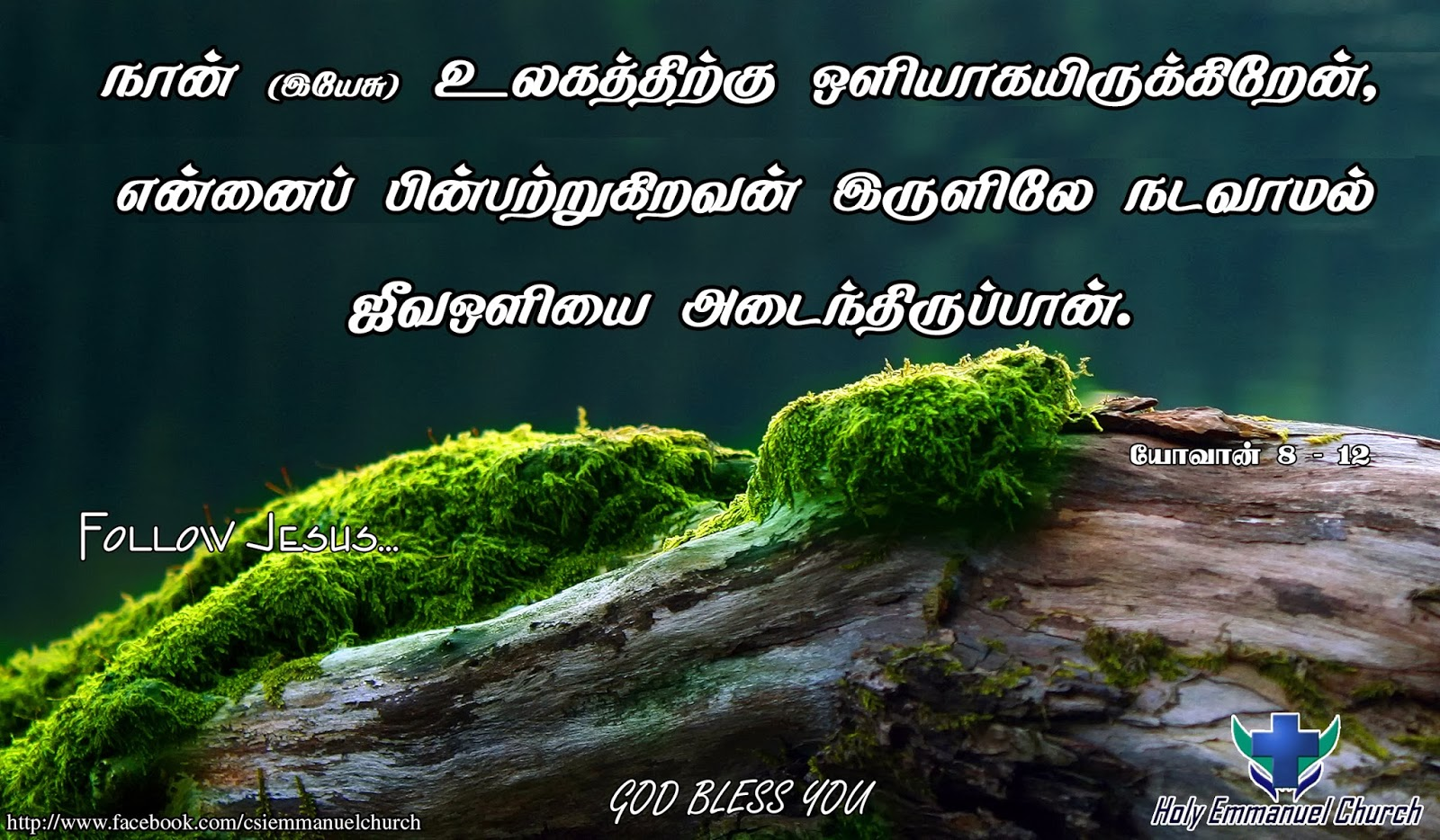 Holy bible tamil online shopping