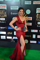 Natasha Nebasha in a Leg Slit Sleeveless Stunning Red Gown at IIFA Utsavam Awards 2017 003.JPG