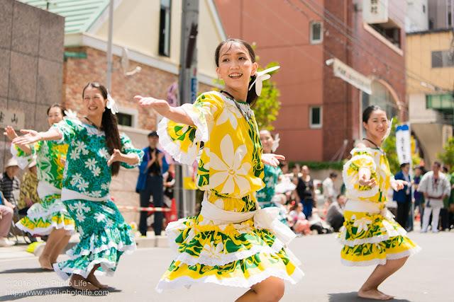 マロニエ祭り、カハレフラ&タヒチスタジオの写真 4