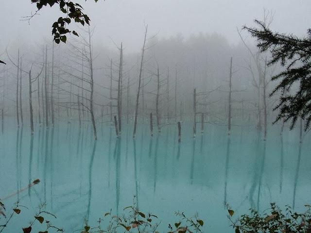 Blue Pond di Hokkaido