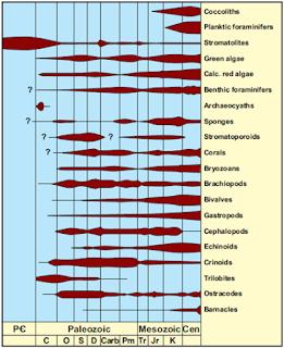 Komposisi dan Mineralogi yang Unik pada Batuan Karbonat