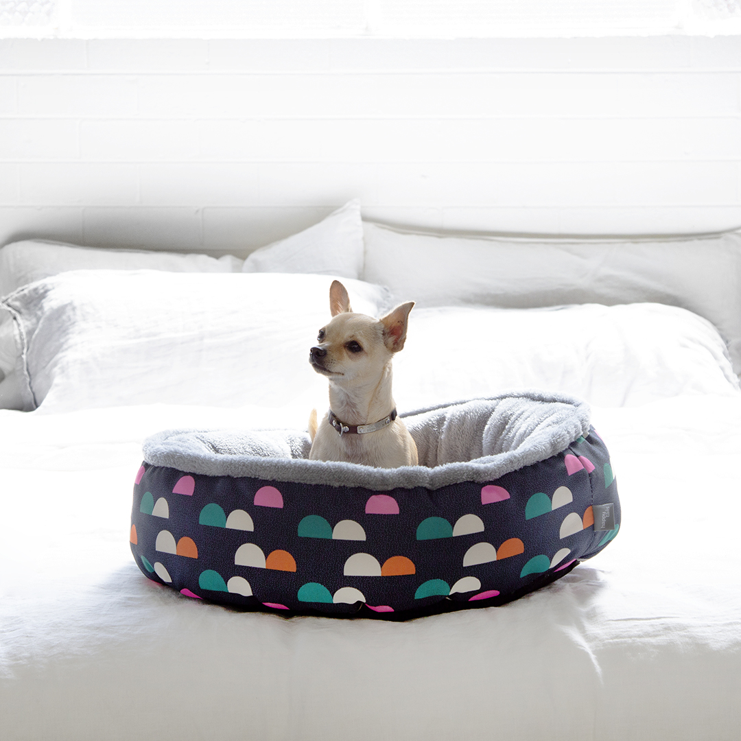 Cotton Dog Beds Australia