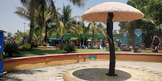 wet n joy water park shirdi entry fee
