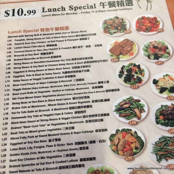 lunch special menu at Enjoy Vegetarian Restaurant in San Francisco, California