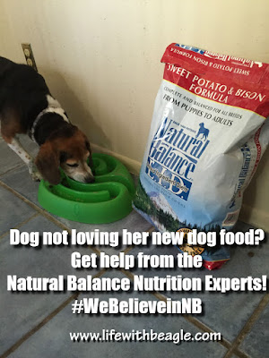 Natural Balance's Nutrition Experts can help you troubleshoot your dog food.
