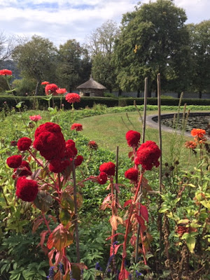red flowers in garden with pond and round thatched roof building in distance