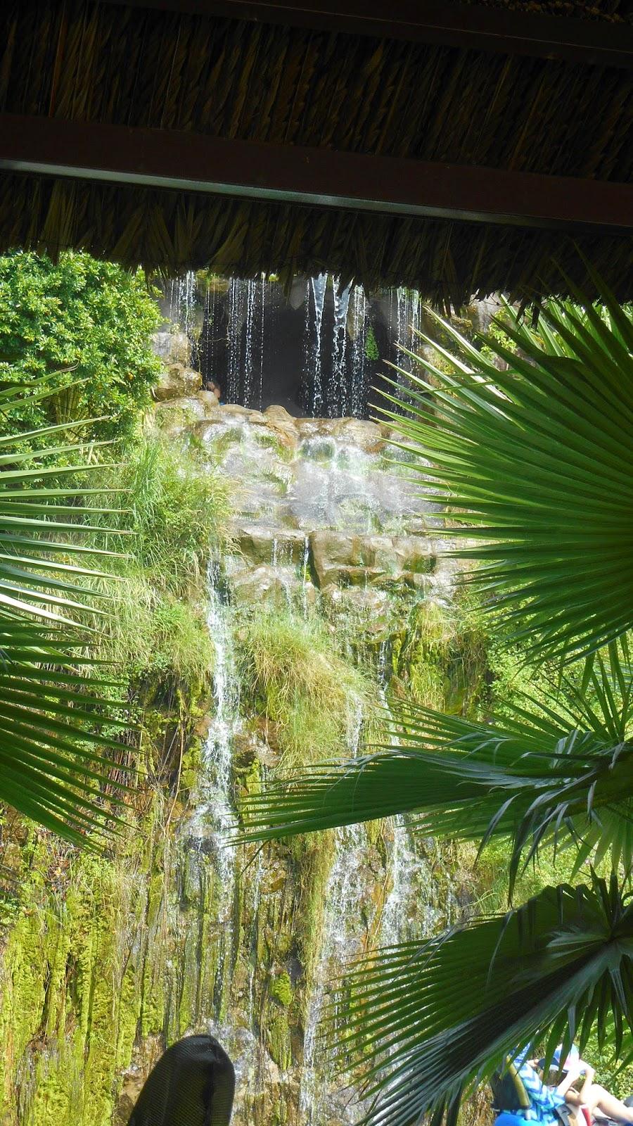 водопад и пальмы