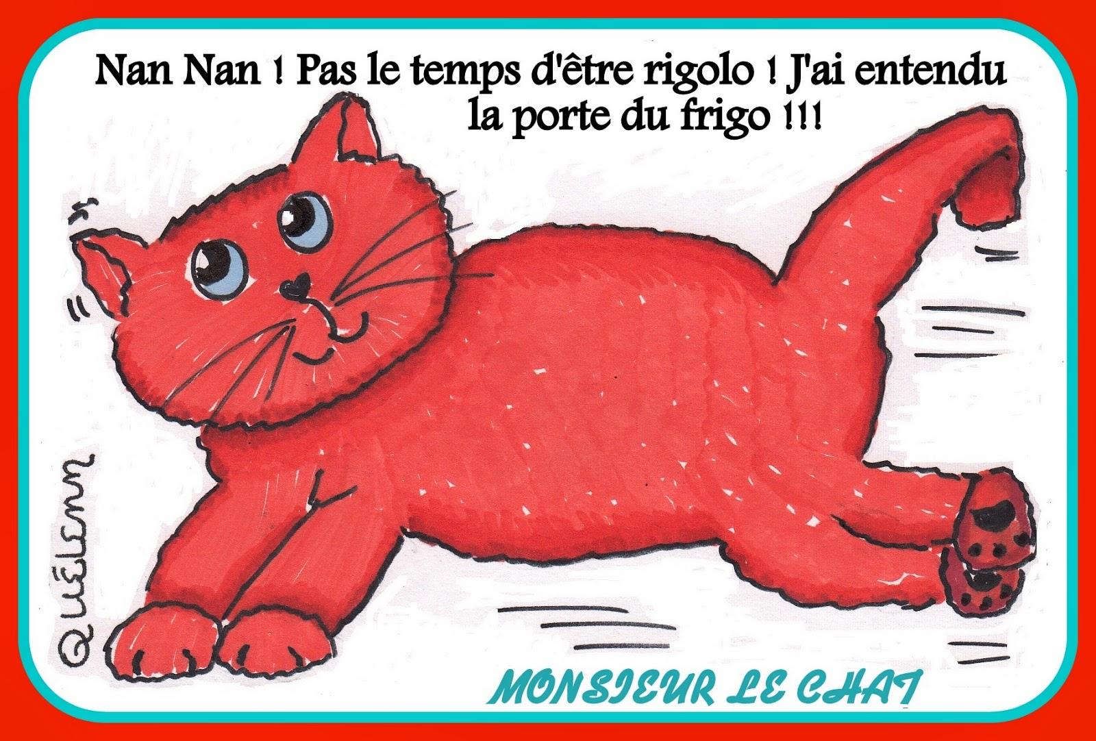 humour, dessin de chat, chat roux,