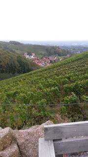 Blick vom Schwarzwald in Richtung Frankreich.