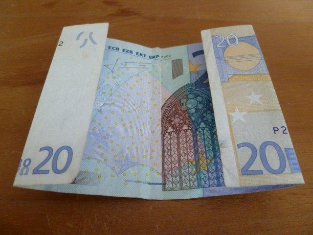 marly design geld bloem money flower
