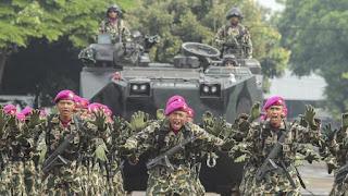 Waduh .. Akademisi Internasional Minta TNI Ditarik dari Papua