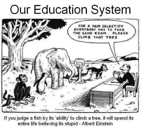 Kartun: Sistem Pendidikan Kita