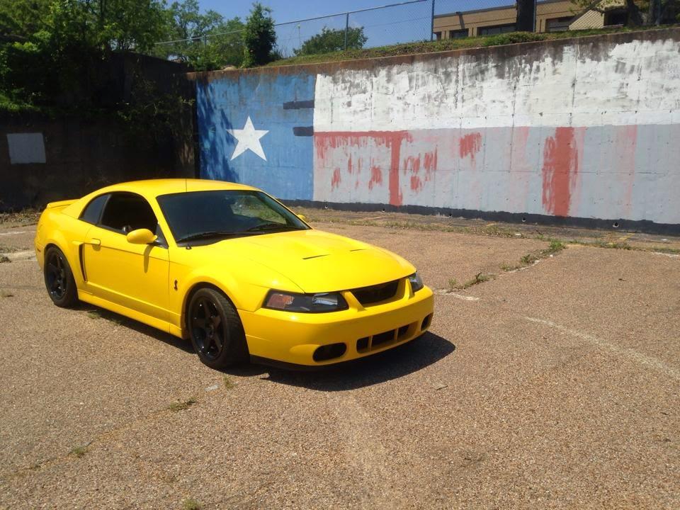 Terminator Cobra Screaming Yellow
