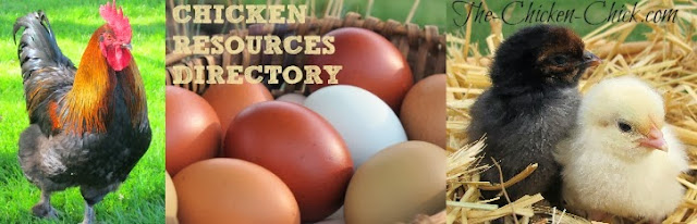 Chicken Resources Directory, Care, Keeping, Tips & Tricks for Happy Hens!