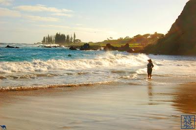 Le Chameau Bleu - nos instantanés hawaïens