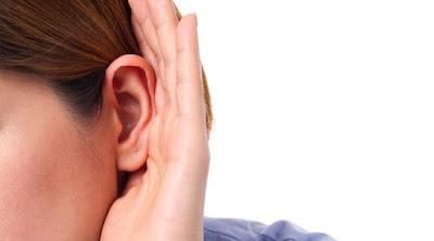 Membalikkan Kehilangan Pendengaran Dengan Menumbuhkan Rambut