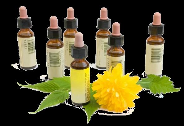 Remedies Homeopathy Id