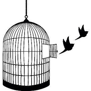 Open Birdcage Silhouette Lehigh Valley Rambling...