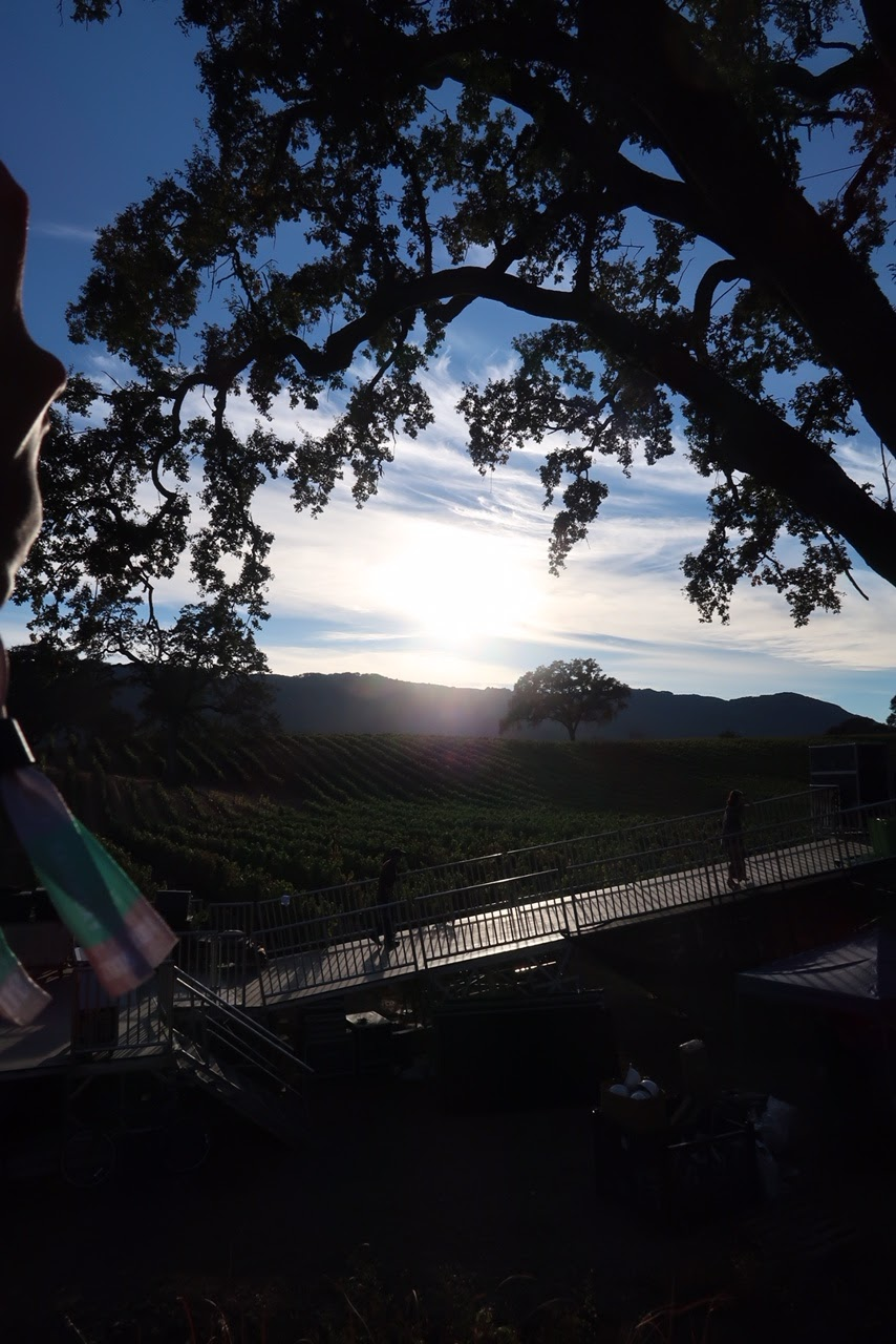 Sonoma, winery, music festival, festival style