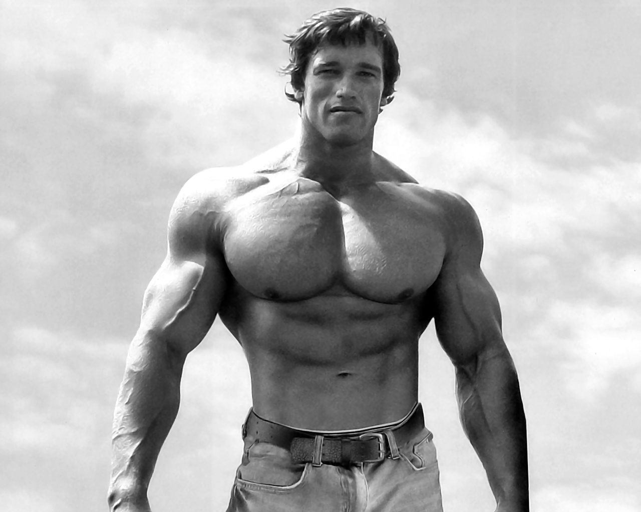 biggest body builders: Arnold Schwarzenegger wallpaper hd