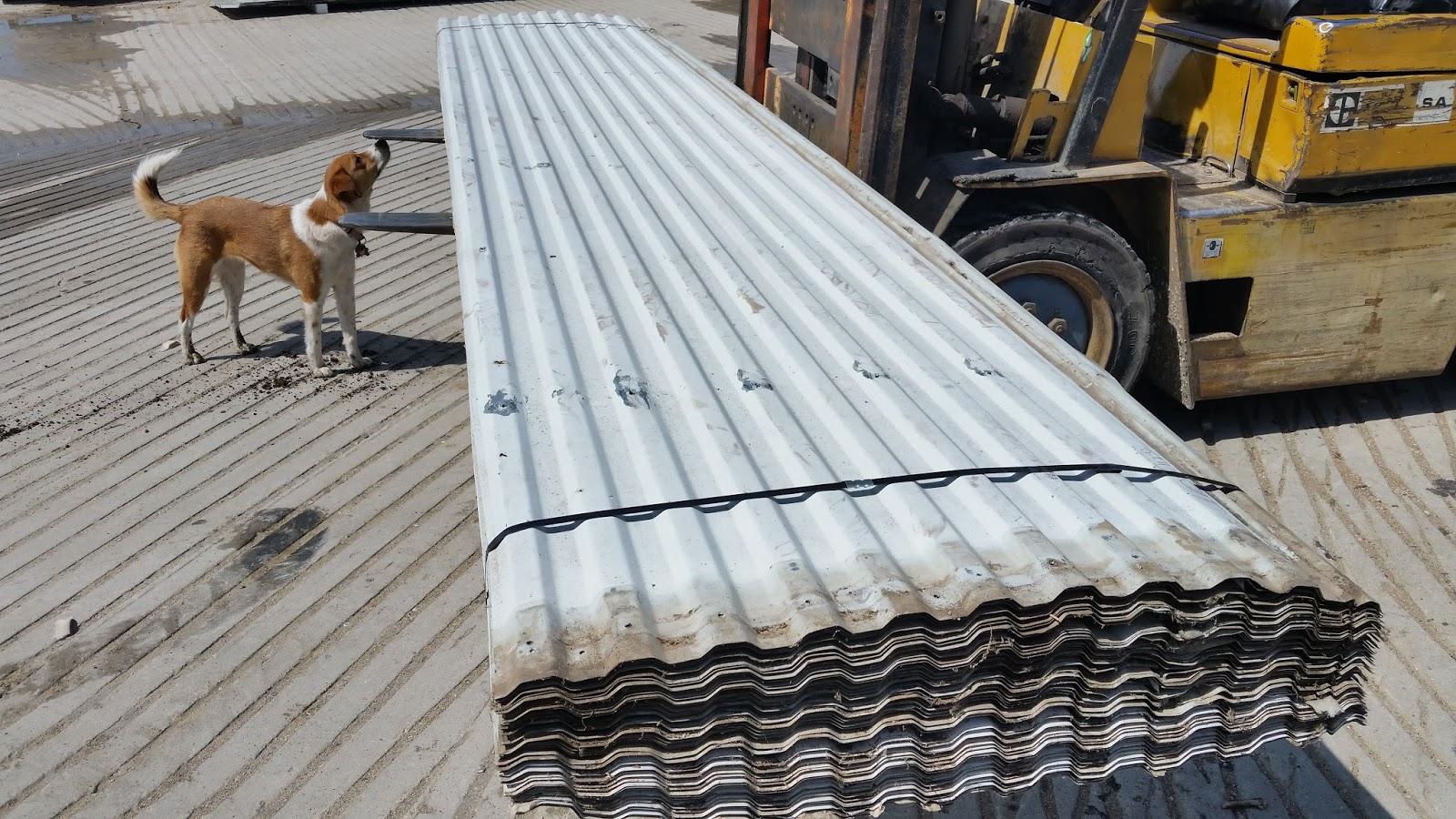 Wisconsin Steel Corp