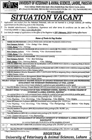 University Of Veterinary And Animal Sciences (UVAS) Latest Jobs 2019 For Professor, Lecturer and others