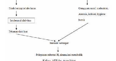 Pathway Ulkus Dekubitus Muhazama