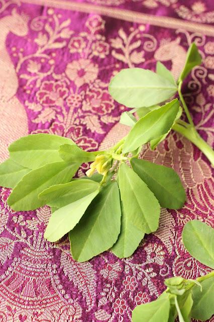 feuilles de methi