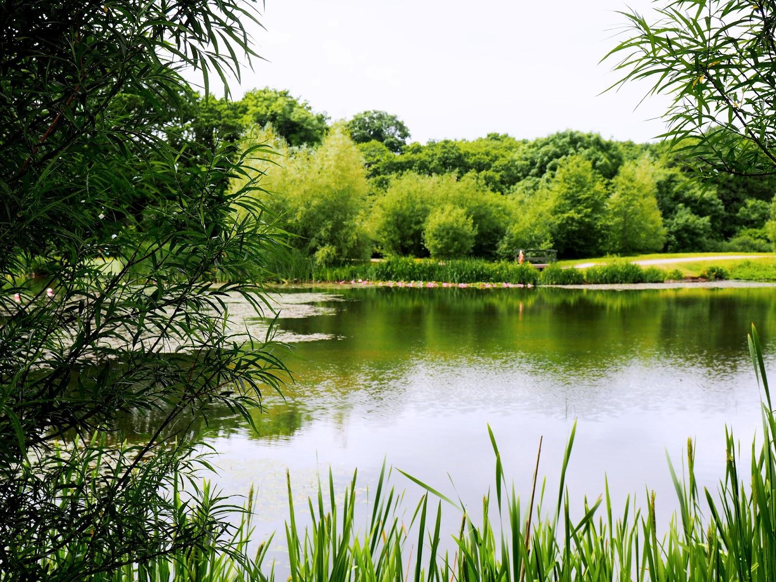 Bluestone Wales Lake Walk