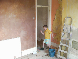 builders l;adder and wallpaper stripping for plastering