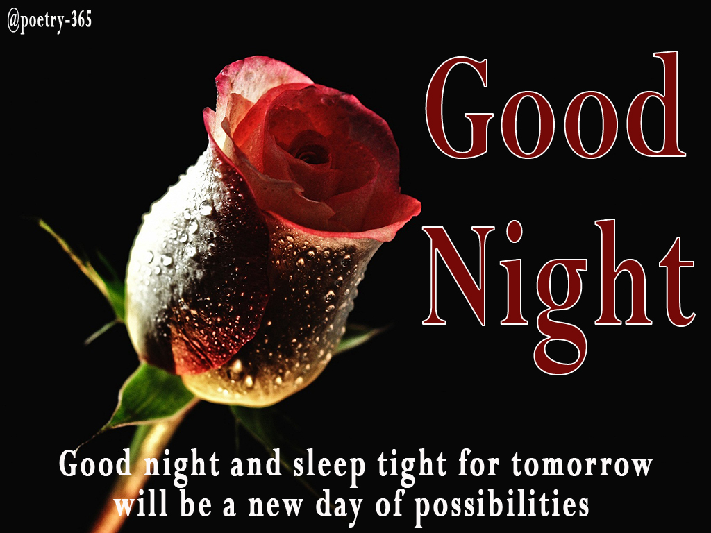 Good Night And Sleep Tight For Tomorrow Will Be A New Day Of Possibilities.