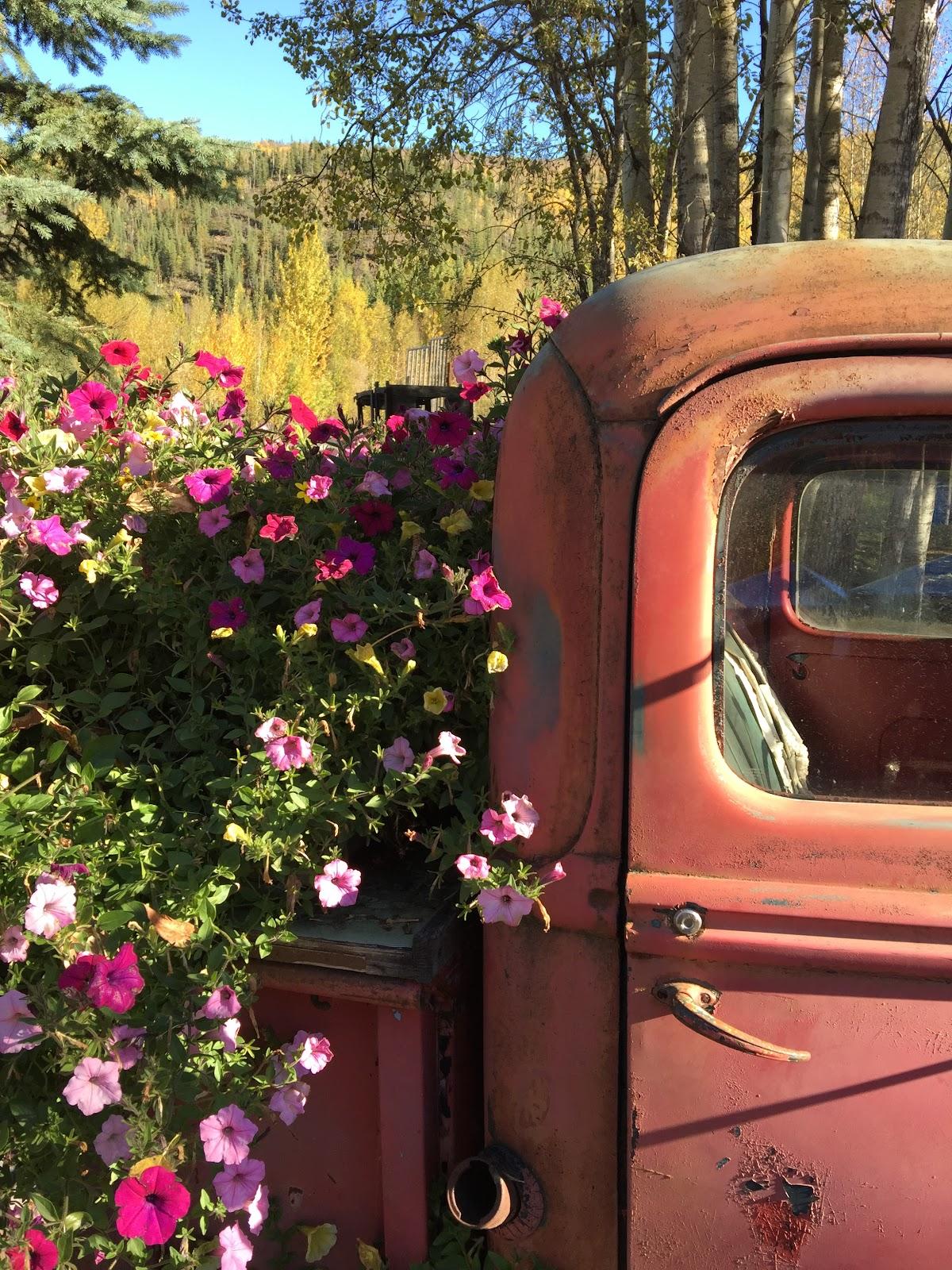 News From Oak Creek Ranch Postcard From Alaska Chena Hot Springs