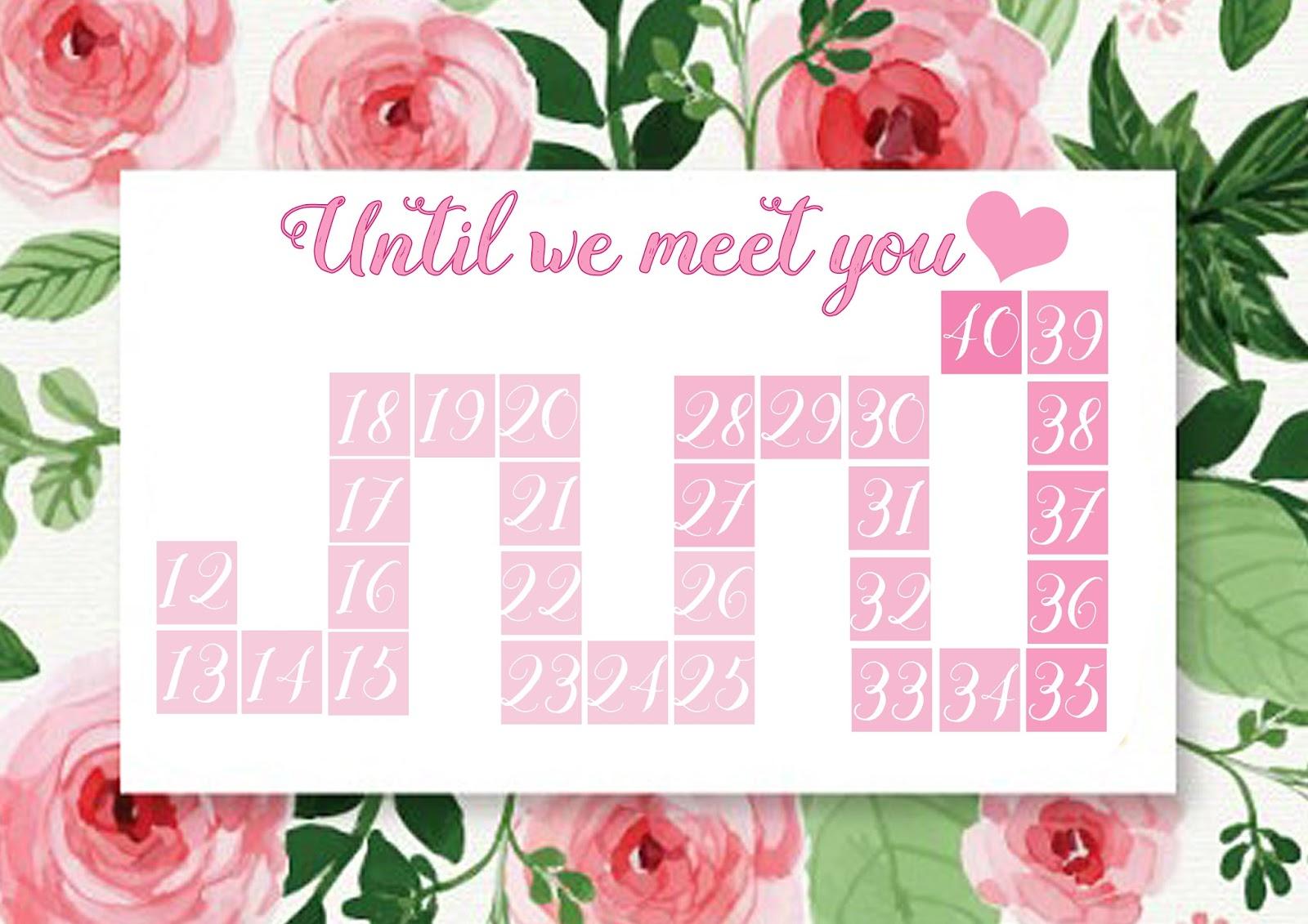 Pregnancy Countdown Calendar