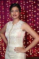 Hamsa Nandini in stunning Sleeveless Designer Gown at Zee Telugu Apsara Awards 2017 03.JPG