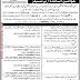 The Citizen Foundation Punjab Jobs