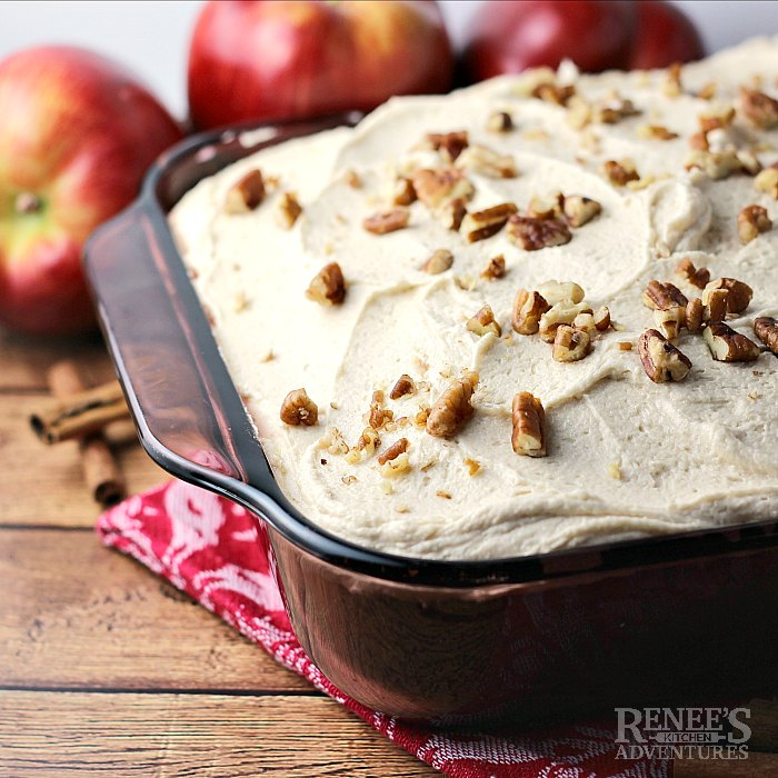 Applesauce Spice Cake in pan