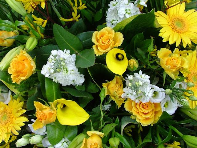 Blume Online Verschicken