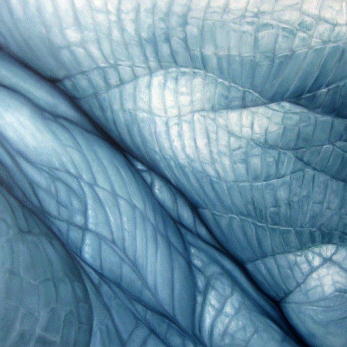Исследование материального мира. Edie Nadelhaft