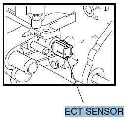 Engine Coolant Temperature Sensor High Voltage ECT Sensor