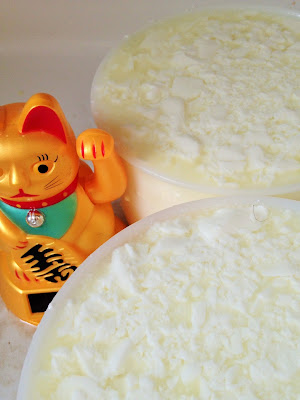 faire son fromage, la laiterie de paris, faire de la tome fraiche, reblochon maison, gaec du vent des cimes, alpage, blog fromage, blog fromage maison, faire du fromage, tour du monde fromage, voyage fromage