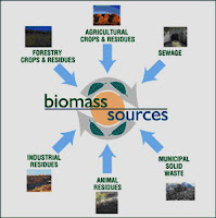 different sources of biomass for producing biofuel