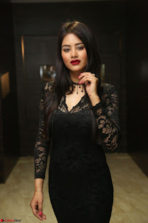 Actress Monica in spicy transparent Black Top at O Pilla Nee Valla Movie Audio Launch Feb 2017 026.JPG
