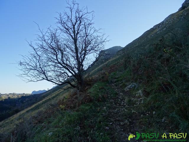 Ruta Cerro de Llabres: Hacia el Collado la Prida