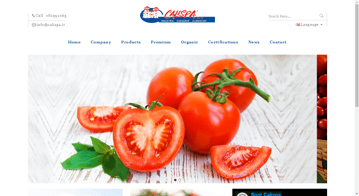 Picture to Italian food exporter company named Calispa Spa