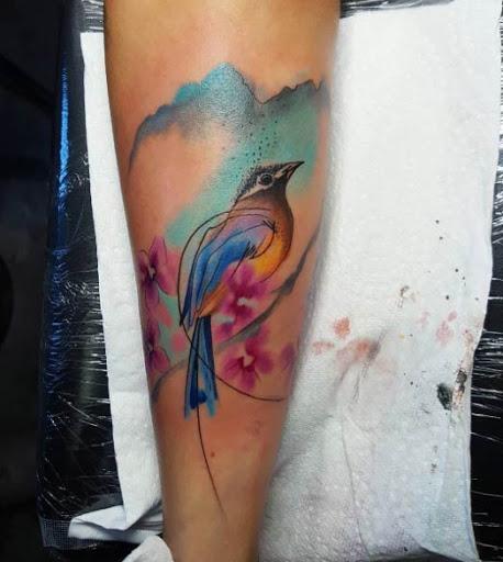 Esta bela aquarela pássaro