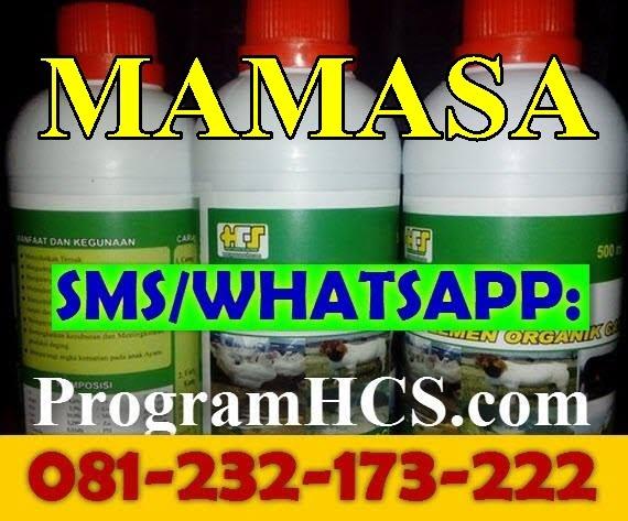 Jual SOC HCS Mamasa