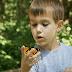 El niño y la mariposa Fabula de Rafael Pombo