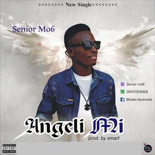 Senior Mo6 - Angeli Mi